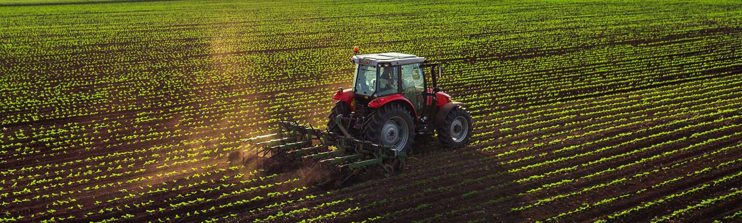 Traktor bei der Bearbeitung eines landwirtschaftlich genutzten Bodens